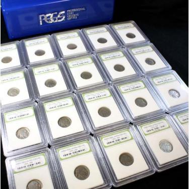 20 Buffalo Coins