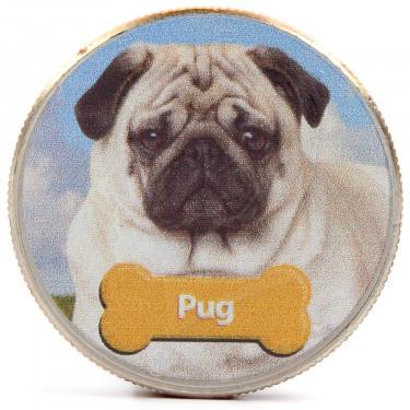 JFKennedy Pug