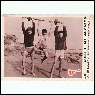 Vintage Monkees