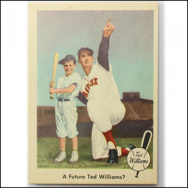 '59 Ted Williams