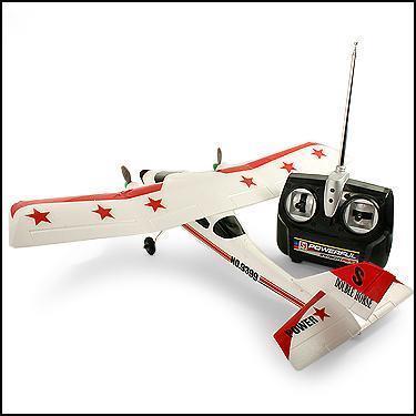 20 Inch RC Plane